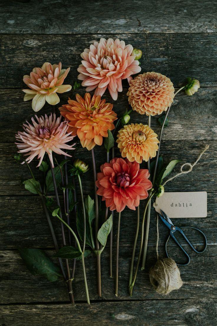 bouquet_da_sposa_autunnale_pinterest_3